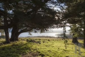 Landscape with lake Coila in the background. Bingie. Nsw. Australia.
