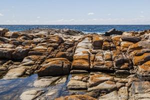 Rock pool near Bingi Bingi pount. Bingie (near Morua) . NSW. Australia
