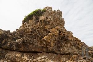 Rocks at Mullimbura point near Bingi. Nsw. Australia.