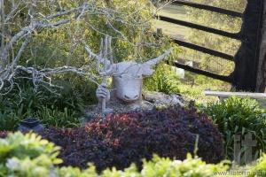 Sculpture of Zeus-bull with trident in his hand. Bingie. Nsw. Australia.