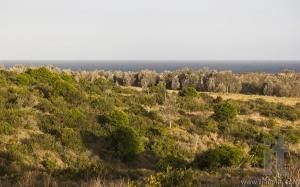Sunset in Eurobodalla national park. NSW. Australia