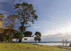 View over the lake Coila towards Tuross Head. Bingie. Nsw. Australia.