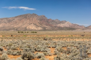 Flinders Ranges Landscape. South Australia