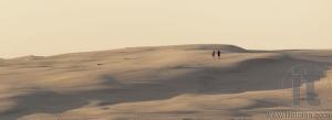 Sand dunes near Stockton Beach. Port Stephens. Anna Bay. Australia.