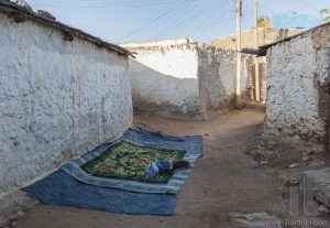 Everything is prepared for coffee ceremony. Ancient city of Jugol. Harar. Ethiopia.