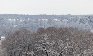Forest and holiday village in distance after heavy snowfall. Moscow region. Russia.