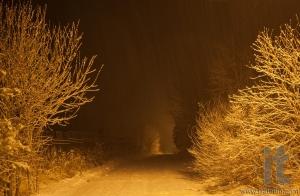 Heavy snowfall at night. Moscow Region. Russia.