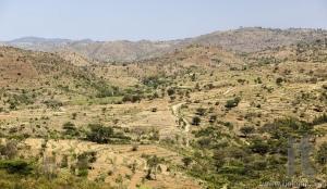 African landscape. Omo Valley. Ethiopia.