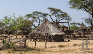 Traditional tsemay houses. Small village in tsemay territory near Weita. Omo Valley. Ethiopia.