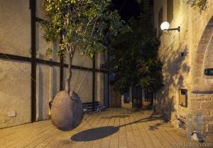 Floating Orange Tree by Ran Morin. Tel Aviv. Israel.
